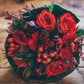 karışık güller